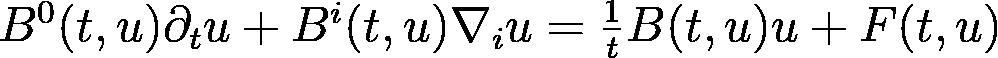B^0(t, u)\partial_t u + B^i(t, u)\nabla_i u =               \frac{1}{t}B(t, u)u + F(t, u)