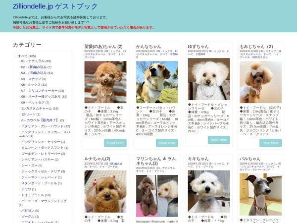 http://4284e0bfaf49abcc.lolipop.jp/guest/