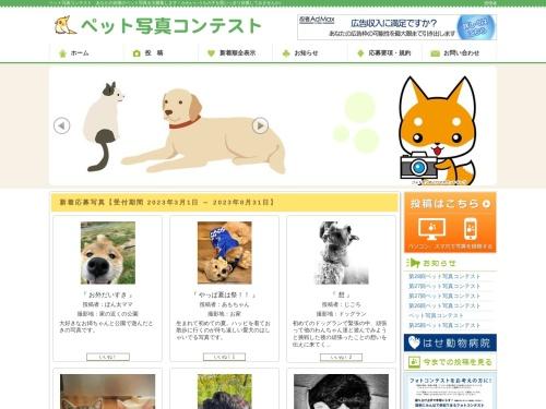 Screenshot of 55web.jp