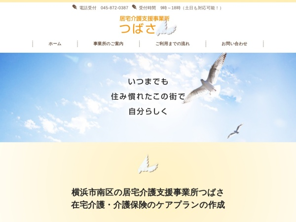 Screenshot of access-mirai.co.jp