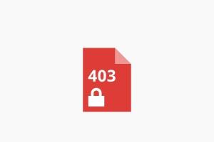 http://ame-wheels.jp/oss-star.html