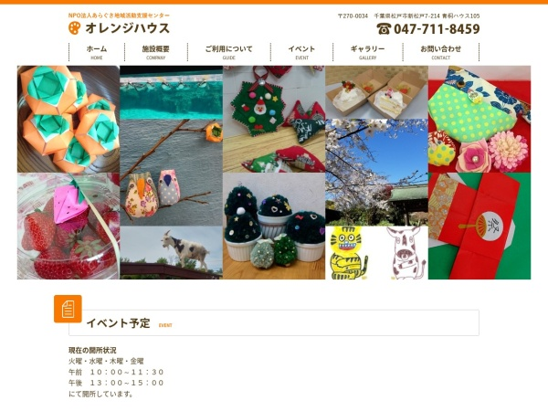 Screenshot of aragusa-orange.com