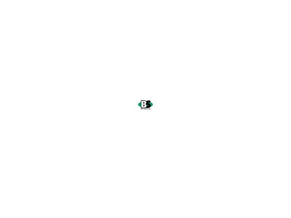 Screenshot of best-sobi.co.jp