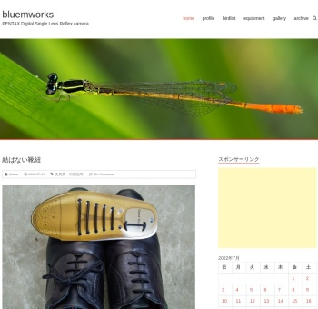 Screenshot of blog.bluemworks.com