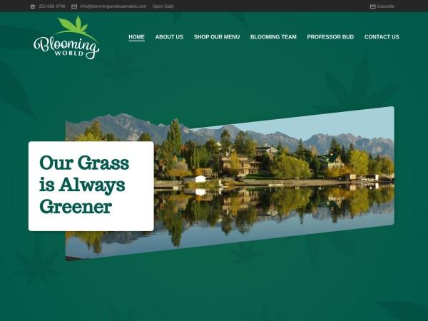 http://bloomingworldcannabis.com/
