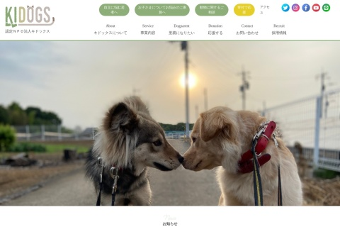 Screenshot of cafe.kidogs.org