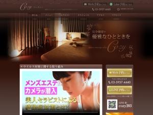 Screenshot of cozy-takadanobaba.com