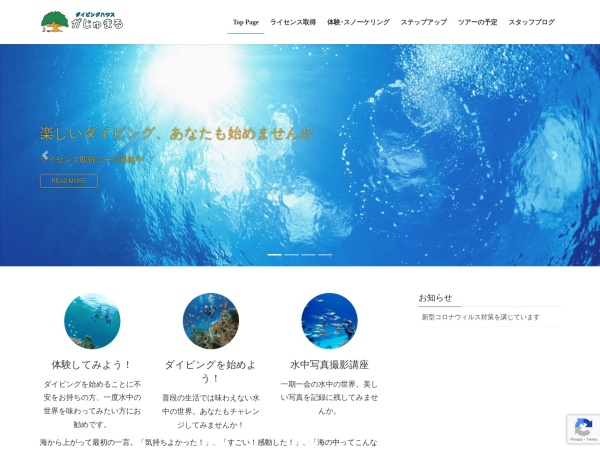 Screenshot of dive-gajumaru.com