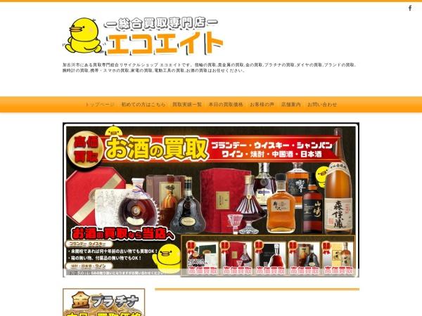 Screenshot of ecoeight.com