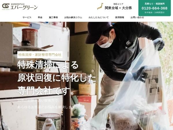 Screenshot of evergreen-is.com