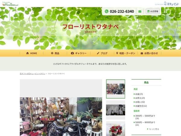 Screenshot of f-watanabe22030.hanatown.net