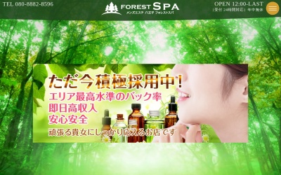 Screenshot of forest-spa.net
