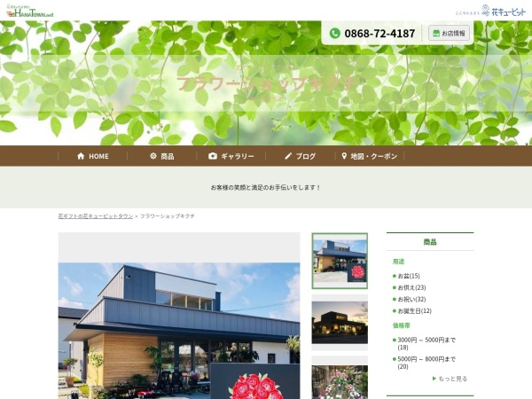 Screenshot of fskikuchi.hanatown.net