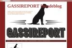 gassireport.blogspot.de