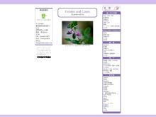 Screenshot of genderlaw.jp