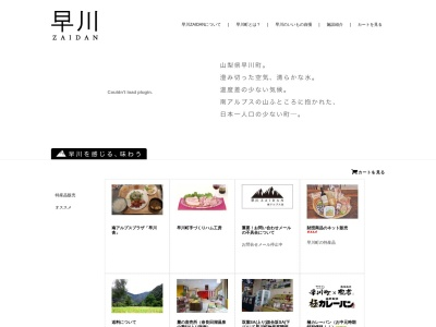 Screenshot of hayakawa-zaidan.com