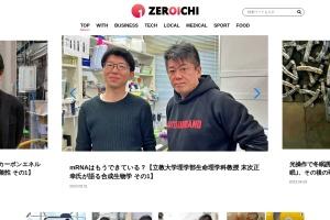 Screenshot of horiemon.com