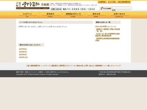 Screenshot of hoshino-museum.com