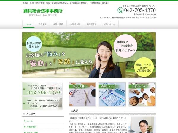 Screenshot of hosogai-law.com