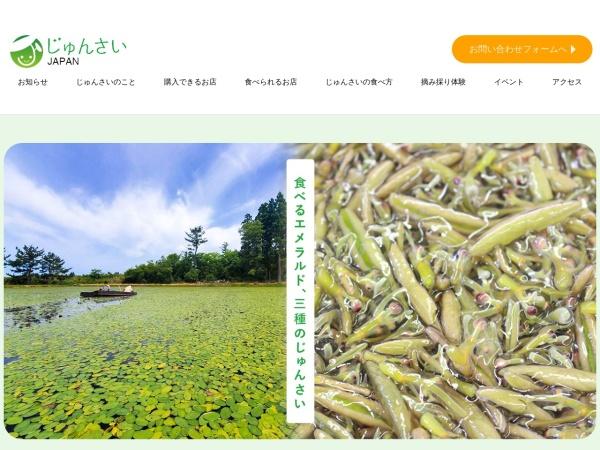 Screenshot of junsaijapan.com