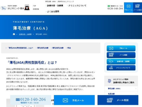 Screenshot of kaji-mens.com
