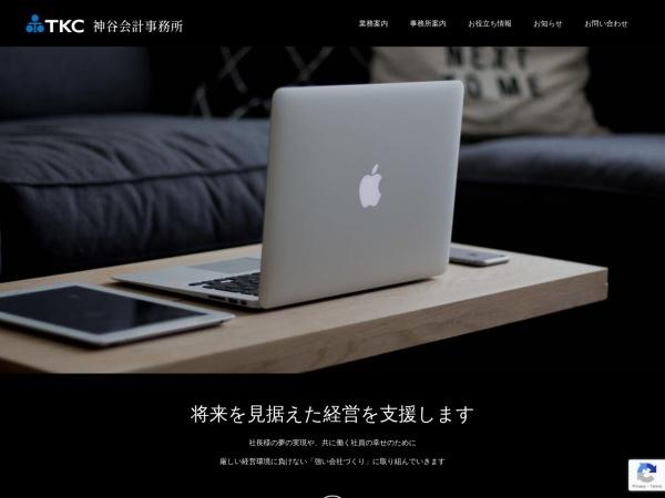 Screenshot of kamiyakaikei.com