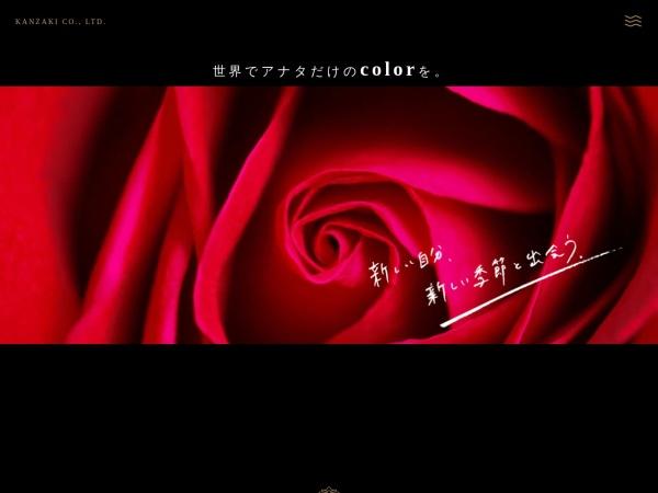 Screenshot of kanzaki-megumi.jp