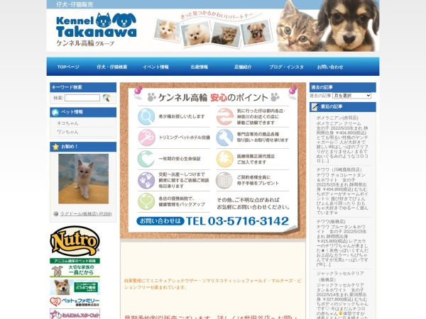 Screenshot of kenneltakanawa.com