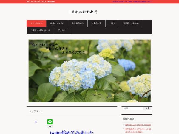 Screenshot of kikkoudo.com