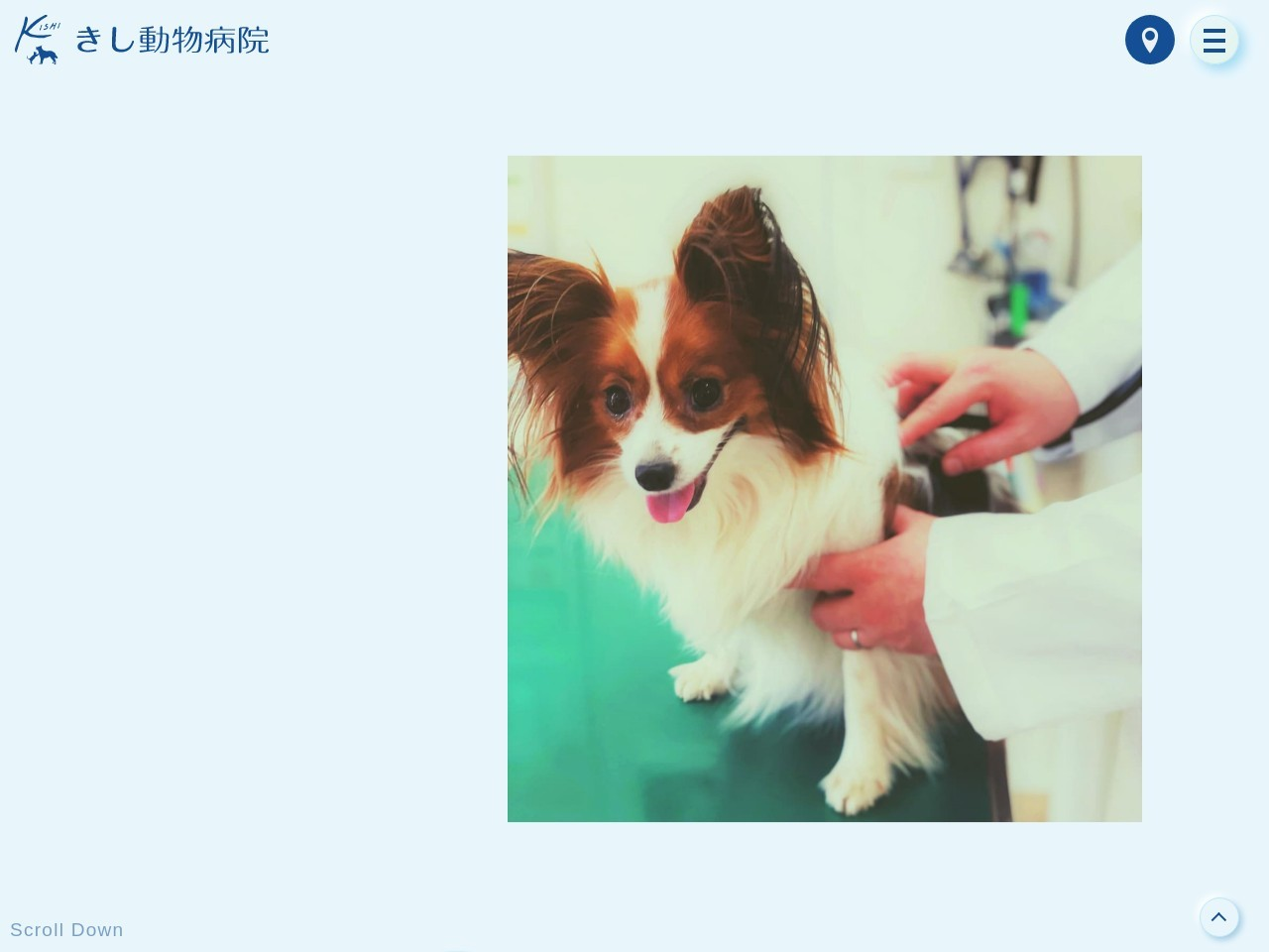 きし動物病院