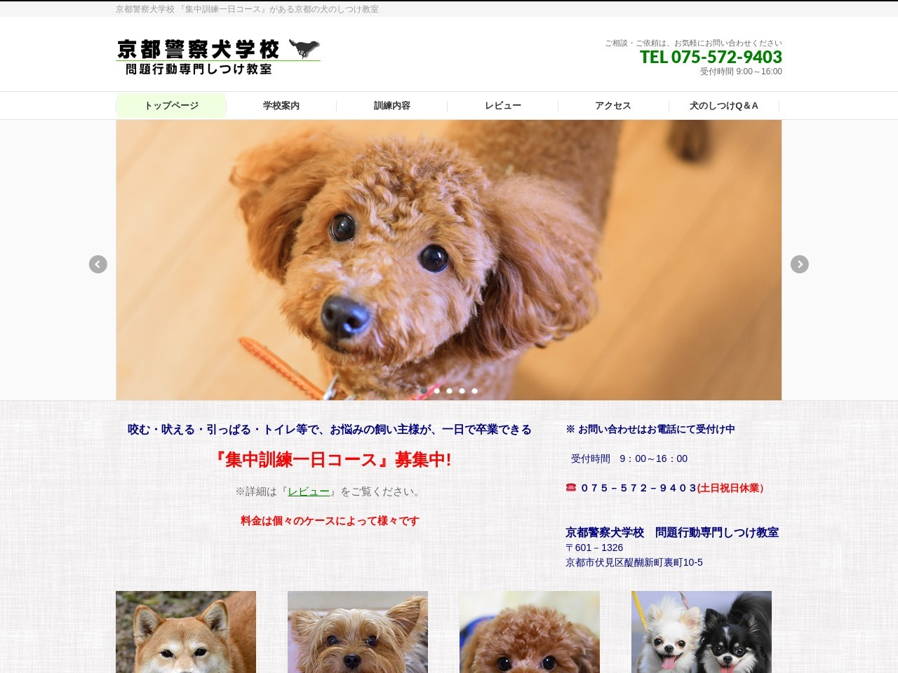 京都警察犬学校―問題行動専門しつけ教室