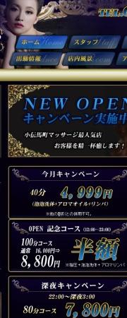 Screenshot of luna-shine.info