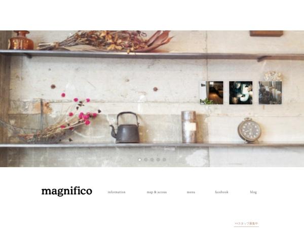 http://magnifico-hair.com