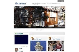 Screenshot of marine-snow.com