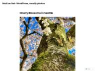 Photography WordPress Theme example