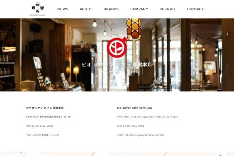 Screenshot of mfs11.com
