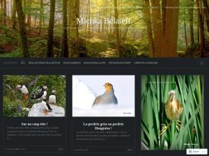 Michka Bélaïeff using the Traveler WordPress Theme