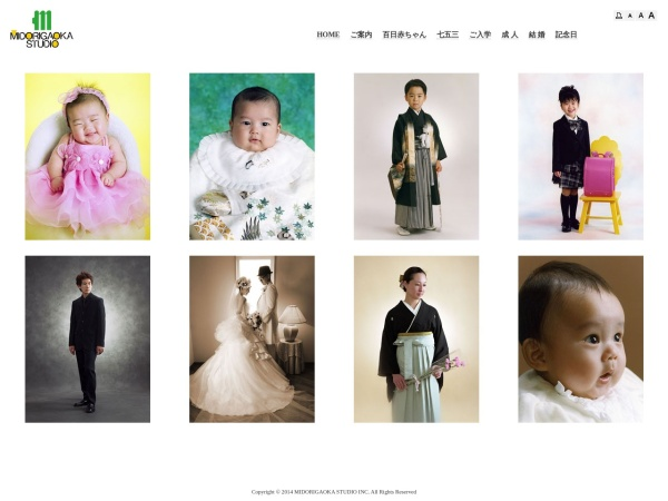 Screenshot of midori-st.com