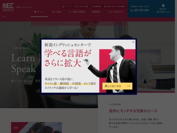 Screenshot of niigata-ec.com