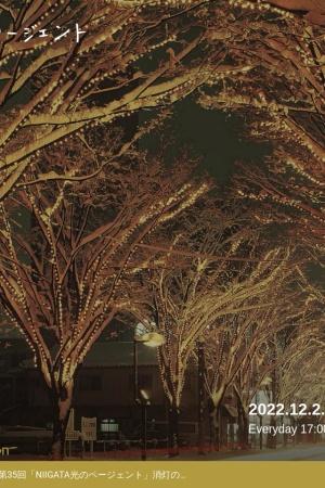 Screenshot of niigata-hikari.jp