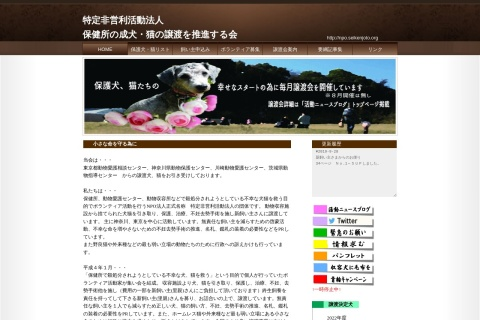 Screenshot of npo.seikenjoto.org
