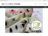 沖縄のトロピカルフルーツ アテモヤ 通信販売