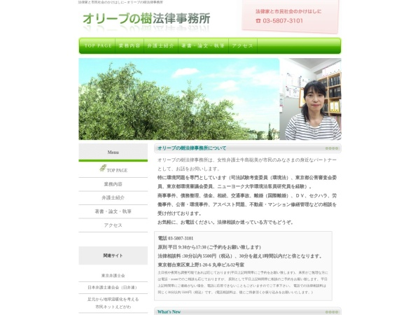 Screenshot of olivetreelawoffice.com