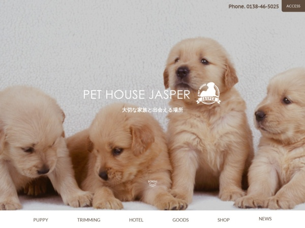 Screenshot of pet-jasper.com