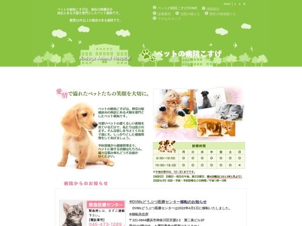 Screenshot of petkosuge.jp