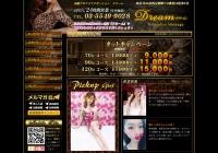 Screenshot of re-akasaka.pw