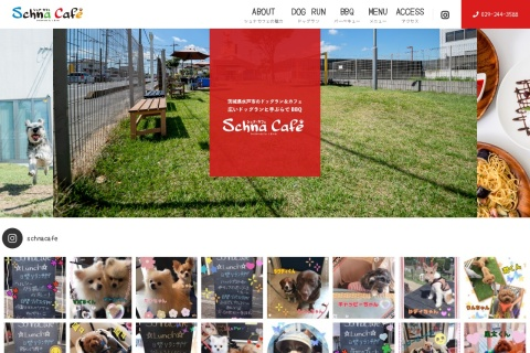 Screenshot of schnacafe.com