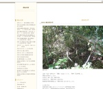Screenshot of sekibutuwalk.blog99.fc2.com