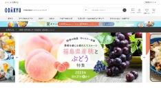Screenshot of shop.odakyu-dept.co.jp