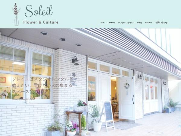 Screenshot of soleil-culture.com